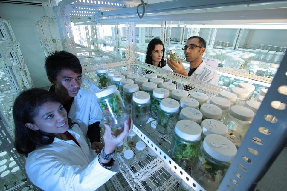 Four scientists inside of a lab storage facility. One pair of scientists is holding up and examining a glass container and the other pair are also examining and discussing a different glass container.